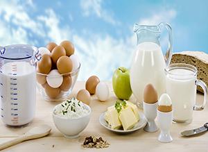 milk substitute,