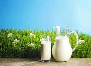 sweetened condensed milk recipe,
