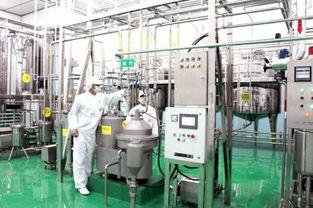milk powder production equipment