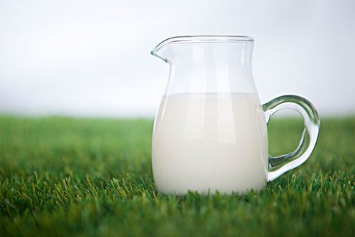 Nutritional value of Milk