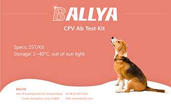 canine-cpv-ab-test-kit