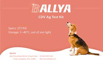 Canine cdv ag test kit