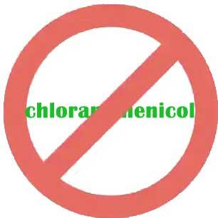 chloramphenicol ban
