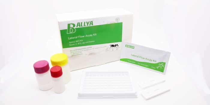 Aminophyllin Test