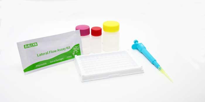 BALLYA Carbamazepine Test