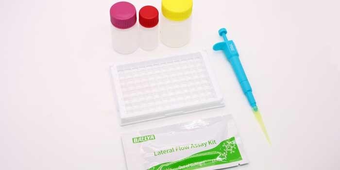 BALLYA Clonazepam Test