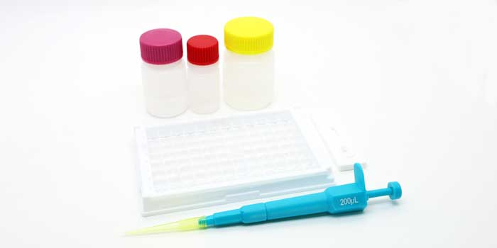 BALLYA Diethylstilbestrol Test