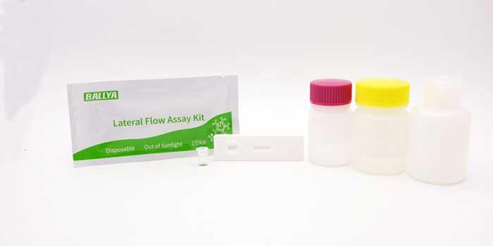 Cefapirin Test