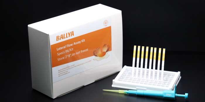 Diisobutyl Phthalate Test