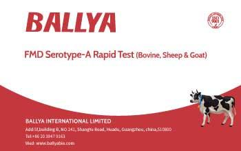 FMD Serotype-A Rapid Test (Bovine, Sheep & Goat)