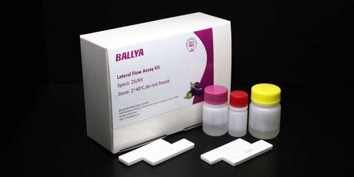 Gibberellin Test