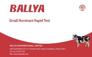 Small Ruminant Rapid Test