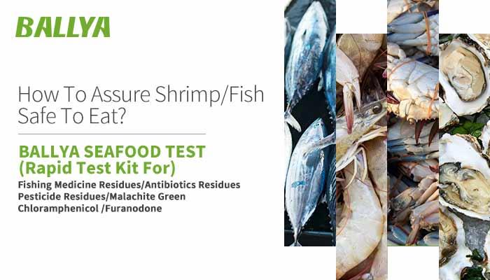 ballya-seafood-test