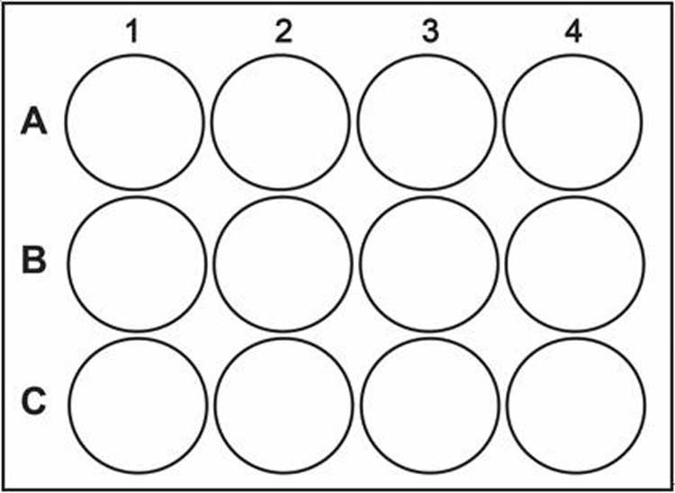 12-well-plate