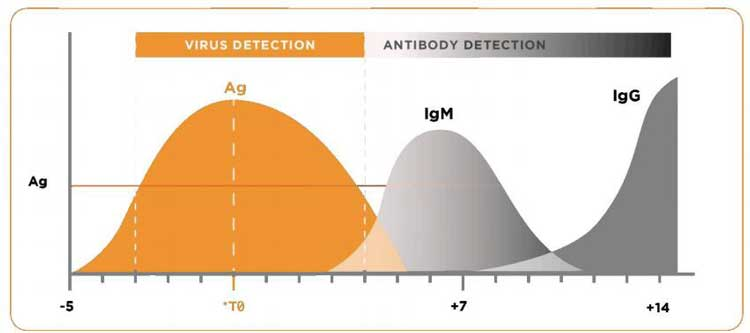Advantage-of-the-Antigen-Test