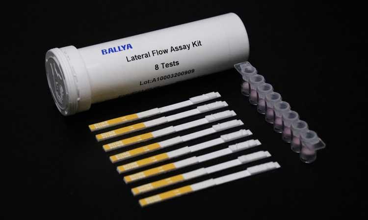 Betalactam-Cefalexin-Combo-Test
