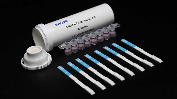 Betalactam-Cefalexin-for-egg