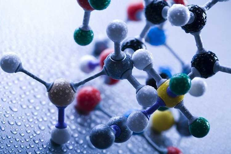 What-is-a-polypeptide