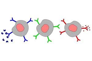 sars-cov-2-antigen-test-for-sale