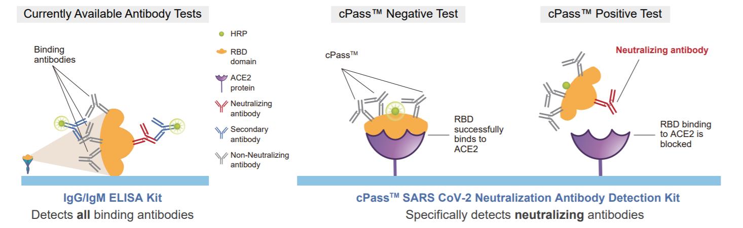 Covid-19-Neutralization-Antibody-ELISA-Test