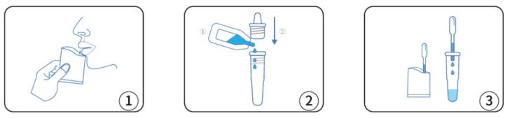 covid-19-antigen-rapid-test-kit