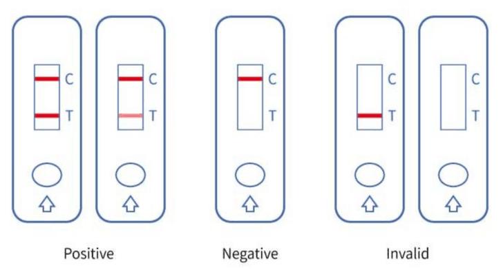 covid-19-antigen-test-kit